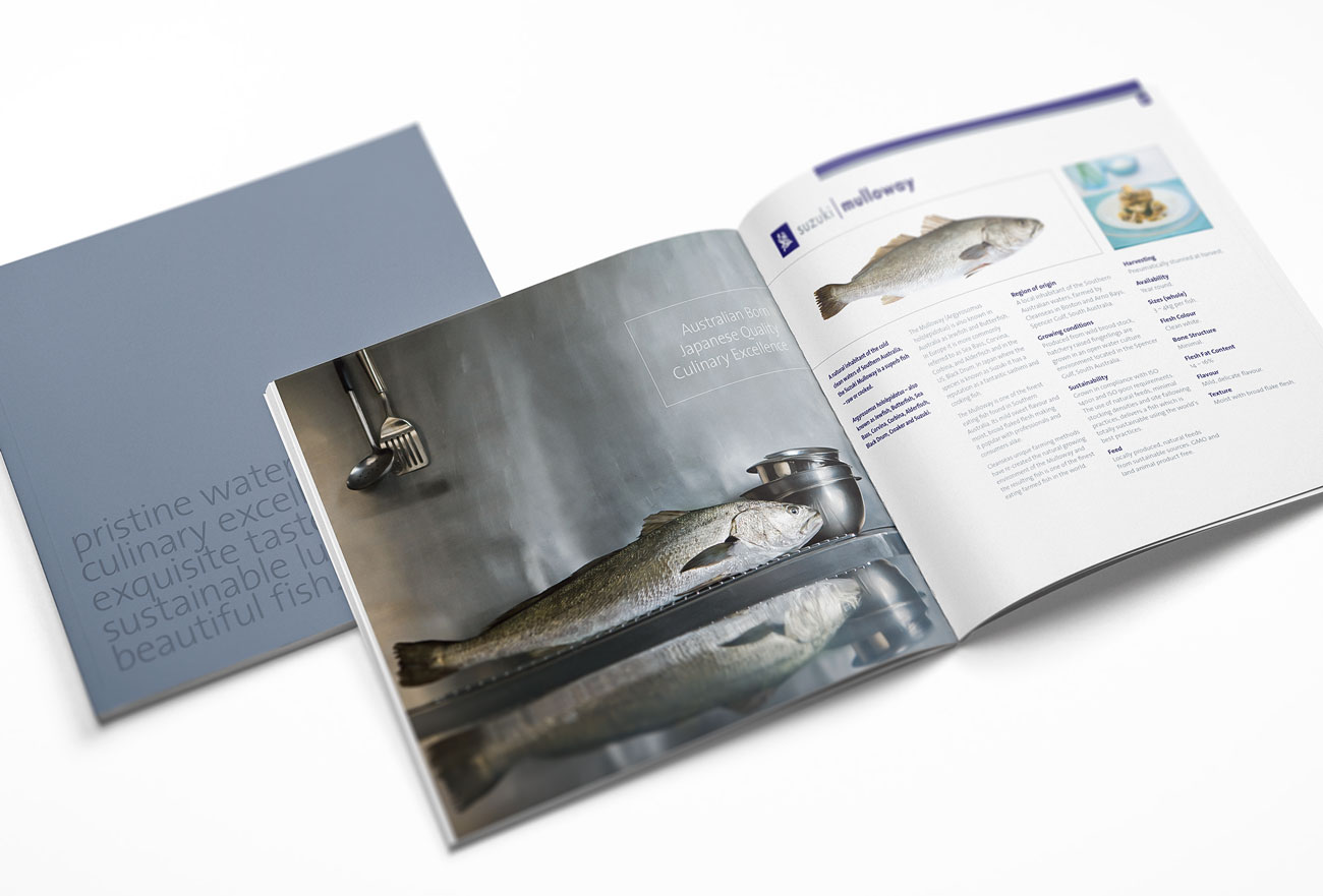 cleanseas-brochures