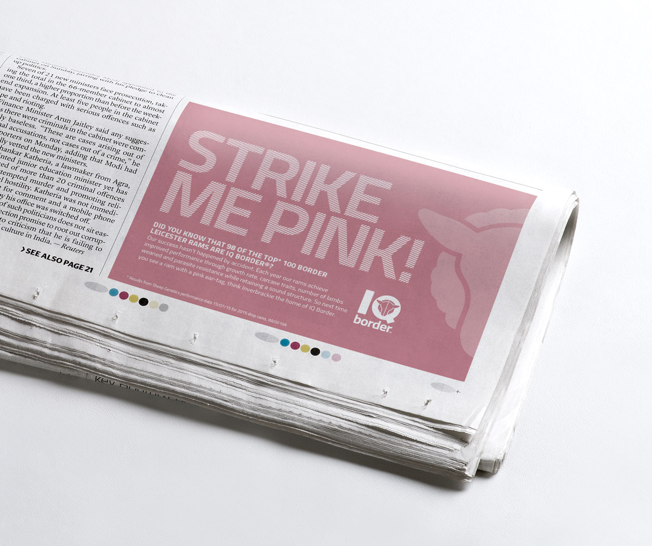 inverbrackie-stud-newspaper
